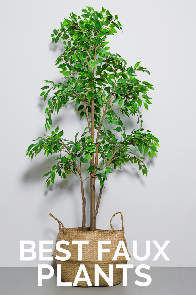 Best Faux Plants